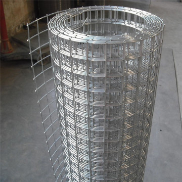 ISO9001 Anping welded wire mesh roll