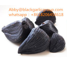 Discount Price for Fresh Peeled Black Garlic Peeled multi disc black garlic supply to France Manufacturer