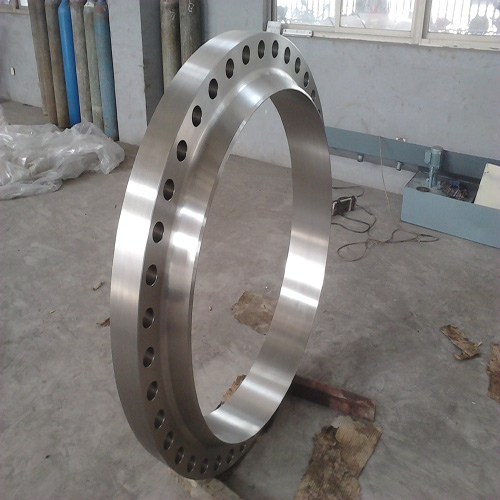 BS Stainless Steel Welding Neck Flange