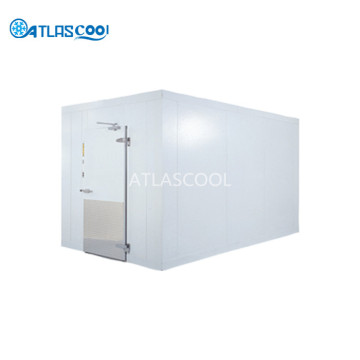 Industrial pu panel cold room for ice cream