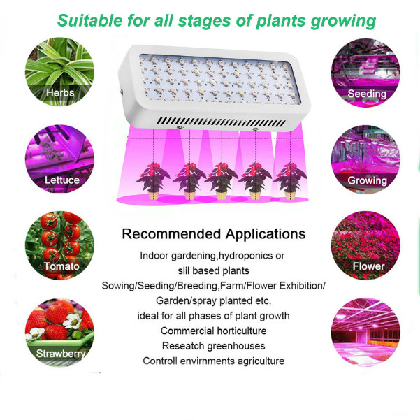 LED Grow Light Applications