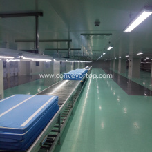 Customized Motor Chain Drive Roller Conveyor Assembly Line