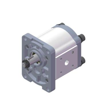 external gear pump cavitation