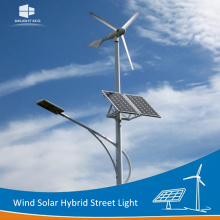 Customized Supplier for Wind Mill Solar Street Light DELIGHT Wind Energy Turbine Generator Solar Street Light export to Andorra Exporter
