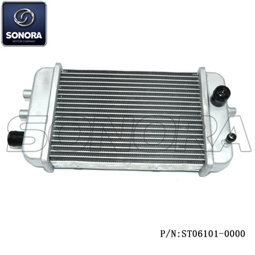 DERBI SENDAR RADIATOR (P/N:ST06101-0000) Top Quality