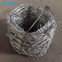 Professional Design for Razor Barbed Wire Factory Price 25kgs Galvanized Barbed Fencing Wire supply to France Manufacturers