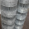 Grassland Fence-Hot dipped Galvanized Kraal Network Fence