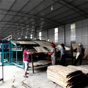 Core Veneer Dryer of Plywood Making Line