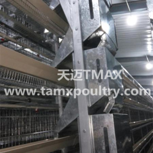 Automatic Chicken Feeding System Shuttle Feed Dispenser