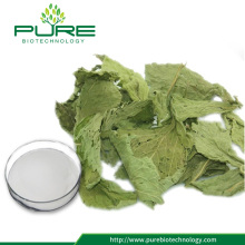 Competitive Price Stevia extract/ Steviosides 80%, 90%