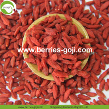 New Arrival Factory Supply Dried Zhongning Goji Berries