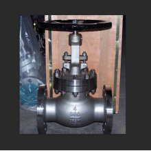 Liquid Ammonia Gas Phase Manual Globe Valve