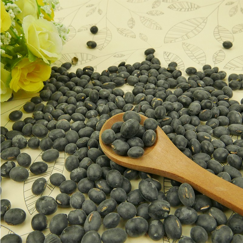 Crude Crop Big Black Beans With Green Kernel