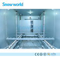 Snow world Rake Type Automatic Ice Storage