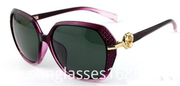 Popular Special Sunglasses