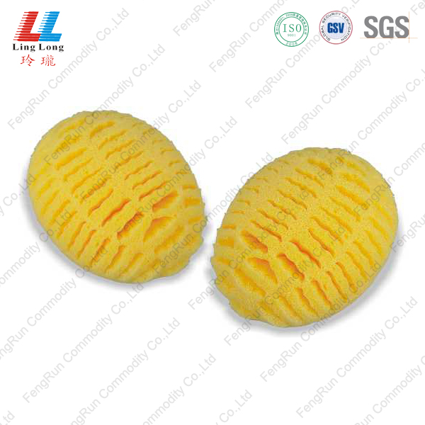 mesh absorption sponge