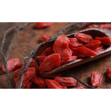 Import organic goji berry