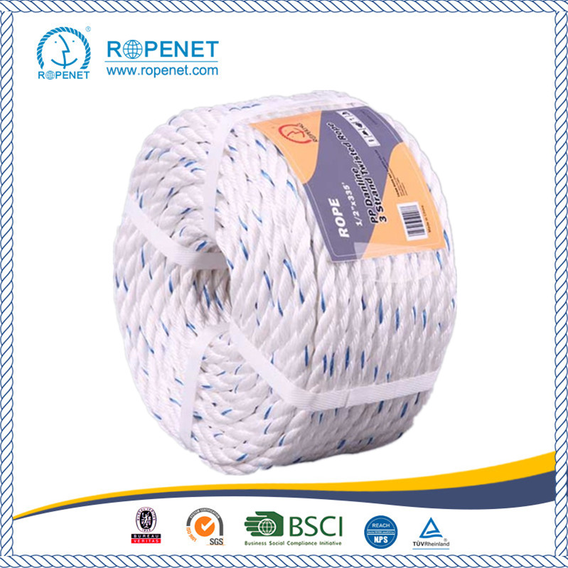 3 Strands Twisted PP Danline Rope with High Strength