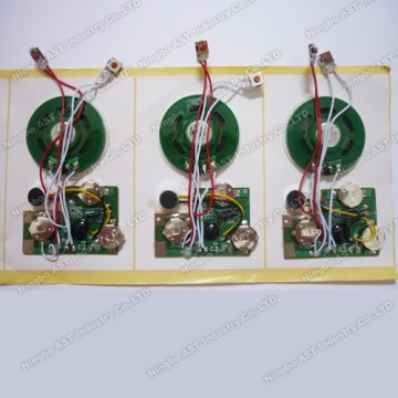 recordable Music Module, Voice Module, Talking Module