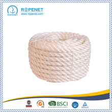 Fast Delivery for MFP Rope With No Joins PP Multifilament Twisted Rope supply to Latvia Factory