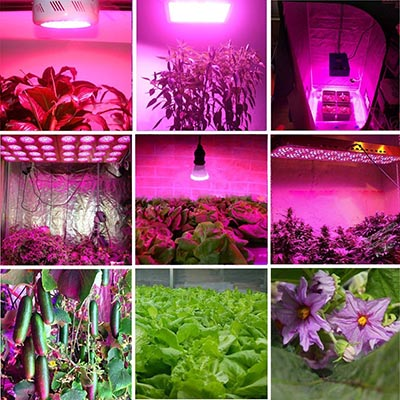 High Power LED Plant Grow Lighting