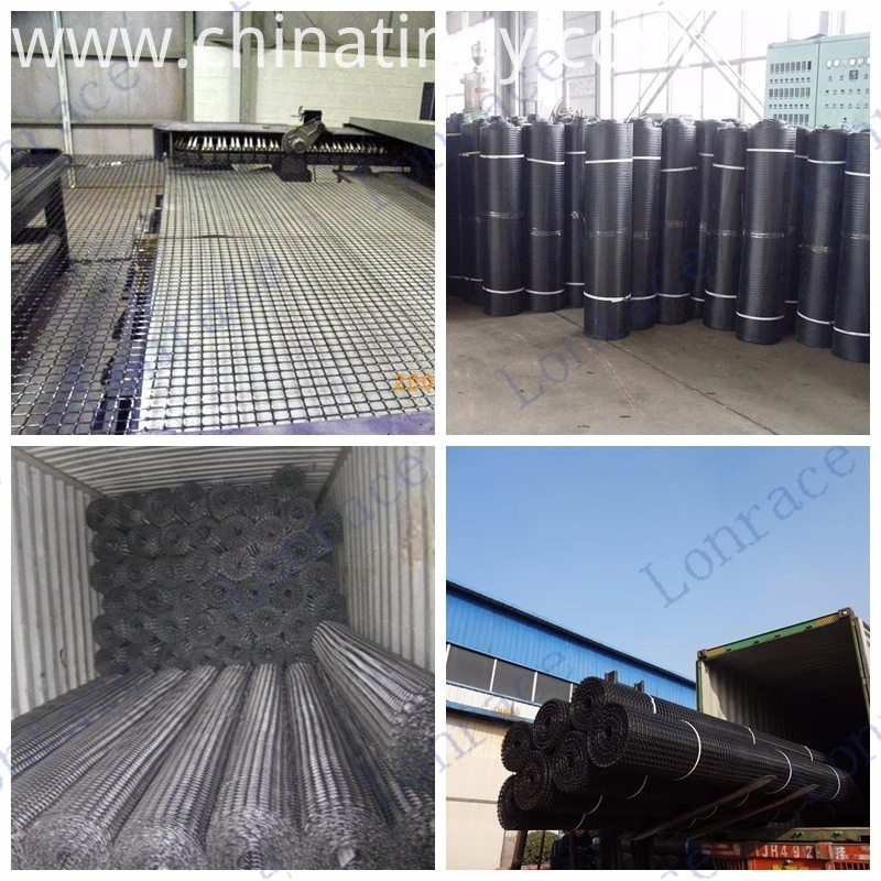 geogrid product
