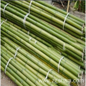 Environmental protection bamboo pole