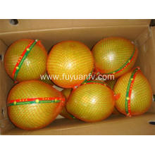Hot sale delicious fresh pomelo