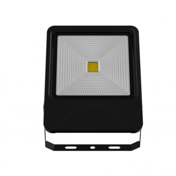 Private Mold 50W COB Outdoor LED Flood Light