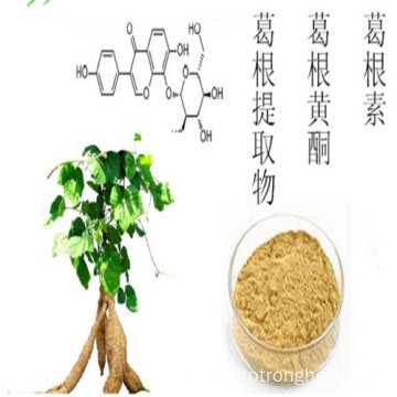 Ginkgo Biloba leaf extract flavone glycosides lactones