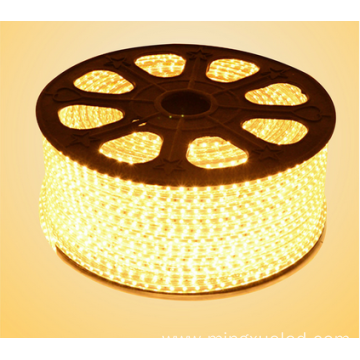 Hot sale Factory for China Leading Ac110V Led Tape Light, Energy Saving Led Tape Light factory 5050 LED Lights AC110V LED Tape Light LED Strip export to Indonesia Supplier
