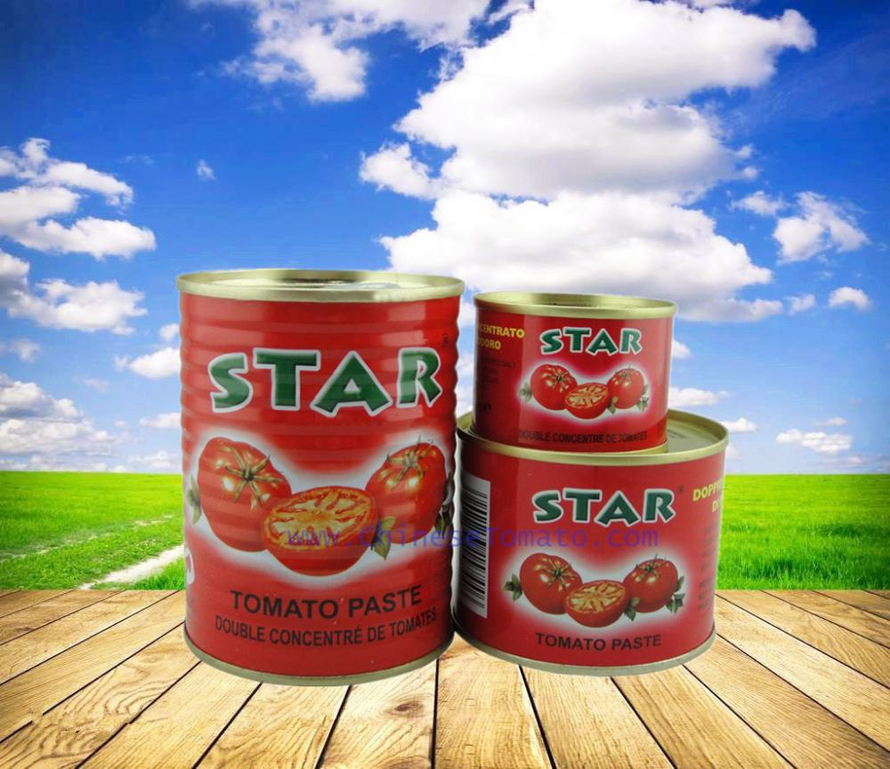 canned tomato paste with 70g size