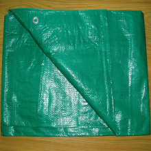 Traitement anti-UV Tarpaulin Green Tarps