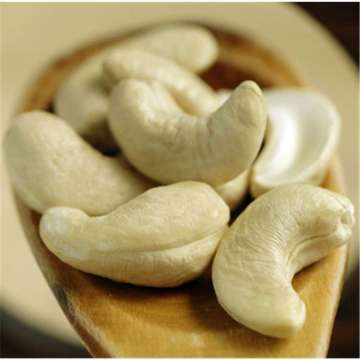 Vietnamese cashew factory high quality cashews