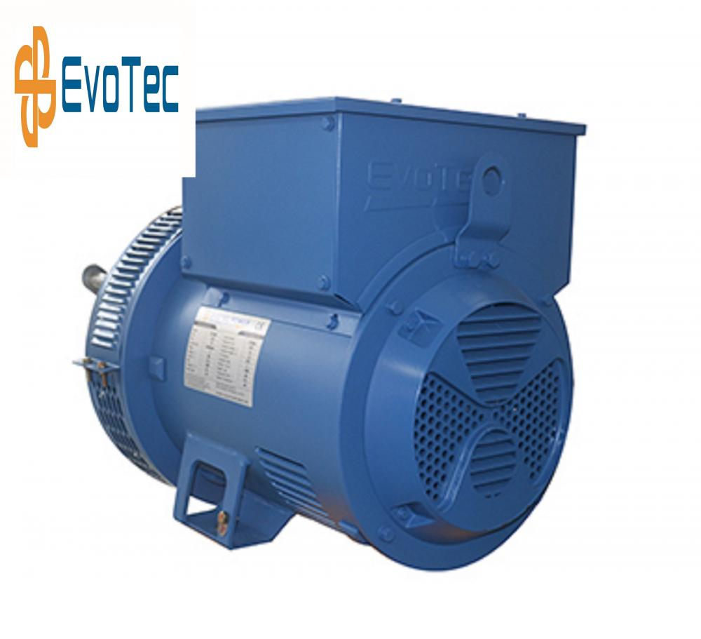 Low Power Brushless Industrial Generator