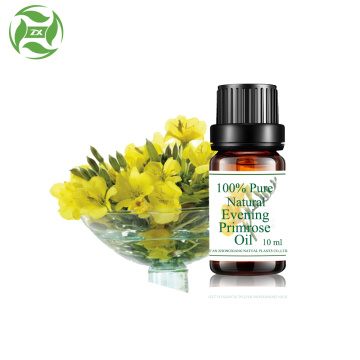 natural Evening primrose oil in bulk price