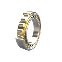 Cylindrial Roller Bearings N200 Series