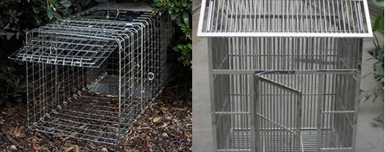 Stainless Steel Welded Mesh Cage