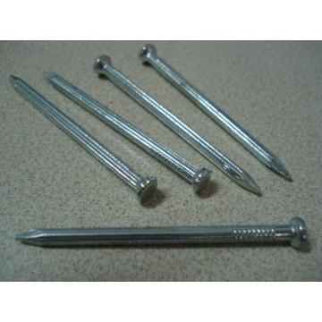 Smooth Shank Galvanized Steel Concrete Nail
