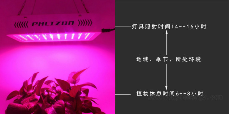 Led Plant Lighting