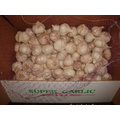 Size of 4.5cm Normal White Garlic