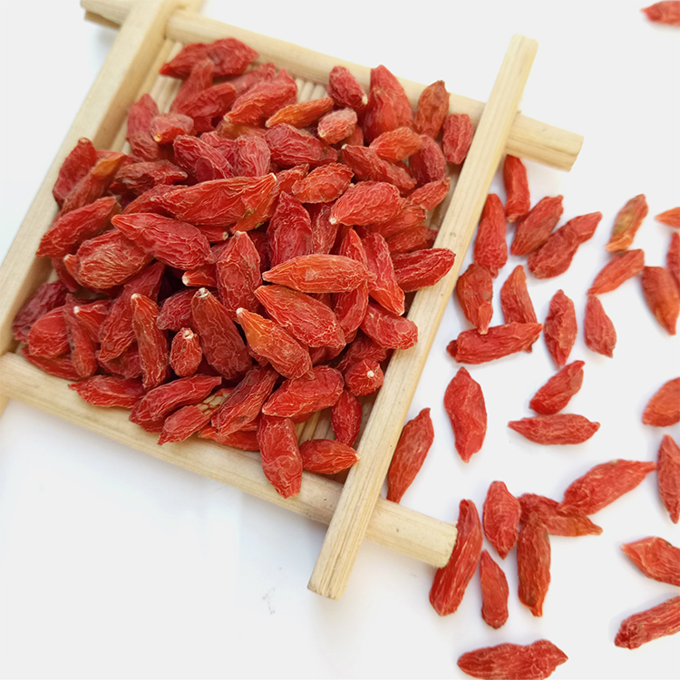 Tibetan Goji Berry with Low price