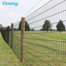 Factory Hot Dip Galvanized Galvanized Knot Field Fence