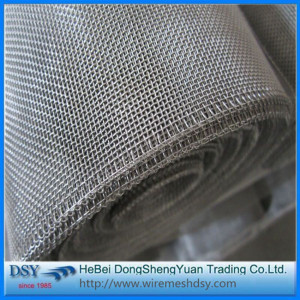 Plain or Twill Stainless Wire Mesh Screen