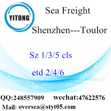Shenzhen Port LCL Consolidation To Toulor