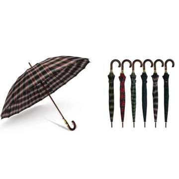 Four Seasons business Umbrella for men
