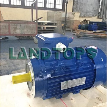 LANDTOP 50KW Three Phase Electric Motor Price