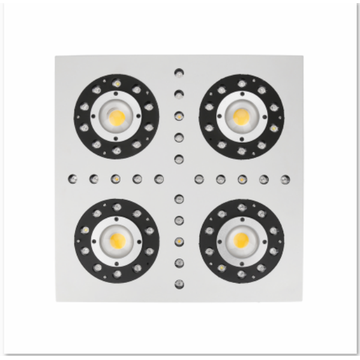 Wholesale COB Crees LED Grow Lights 300W