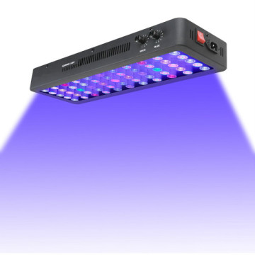 Remote Aquarium LED Lighting for Fish Tank
