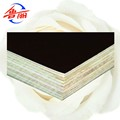 Shuttering usage black film faced plywood
